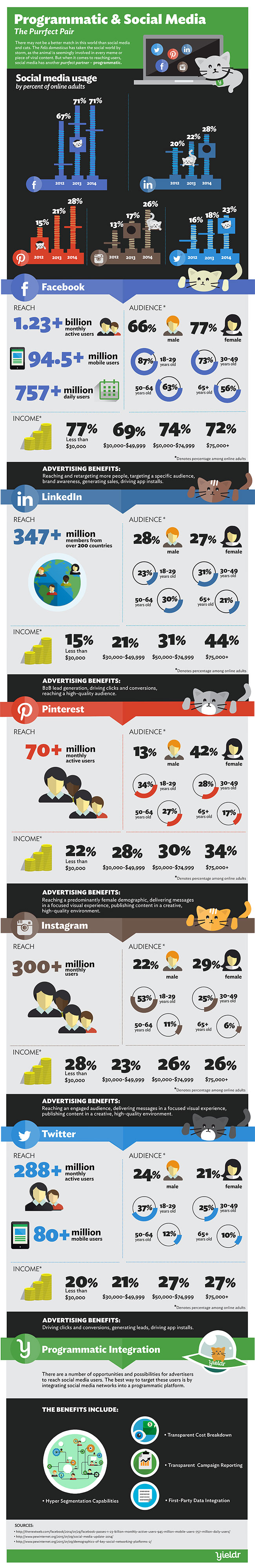 Programmatic-Social-Media-Infographic_650px