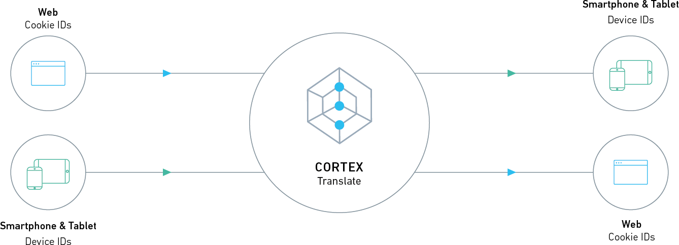 cortex-translate-diagram_Adbrain