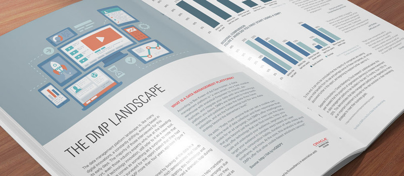 dmp-landscape-report-full