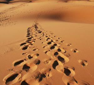 Pas sur le sable